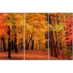 """Split Canvas Art Set 12""""x24"""" 3 Pieces Autumn Forest"""