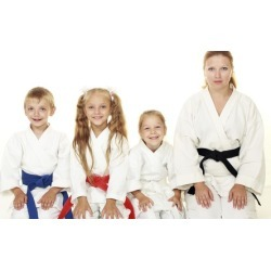$40 for One Month of Karate Classes at Greenville Karate Club ($80 value) found on Bargain Bro India from groupon for $40.00