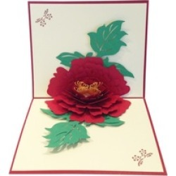Pop up Greeting Cards  Gift