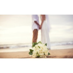 $647 for $995 Worth of Wedding-Planning Services - Alexievents ltd
