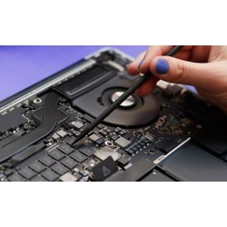 $55 for Virus or Spyware Removal and System Tune-up at Evan's Computer...