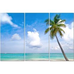 """Split Canvas Art Set 12""""x24"""" 3 Pieces Palm Beach"""