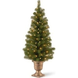 National Tree MC7-308-40 4 ft. Montclair Spruce Entrance Tree