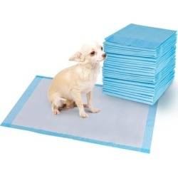 Potty Puppy Training Pads (200 Pieces)