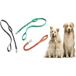 Pet Dog Travelling Colorful Dog Leash