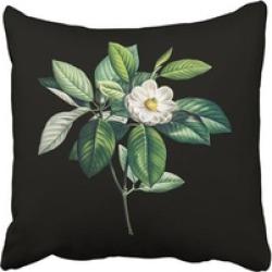 Throw Pillow Magnolia 18 Inch Cushion Decorative Square Home Sofa