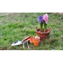 $26 for $50 Worth of Gardening Supplies at AJT Supplies
