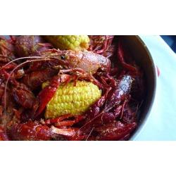 $14for $20Worth of Shellfish and Seafood at Chasin' Tails Cajun Seafood & Bar