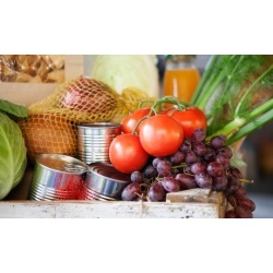 Initial Appointment with One or Two Additional Visits at Holistic Nutrition Center (Up to 60% Off)