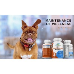 The Original 5-IN-1 Dog Vitamins with CoQ10 Supplement Soft Chews