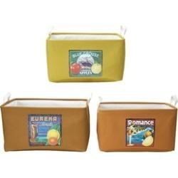 Elements Set of 3 Nesting Storage Baskets, Fruit Labels