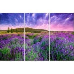 "Split Canvas Art Set 12""x24"" 3 Pieces Purple Field"