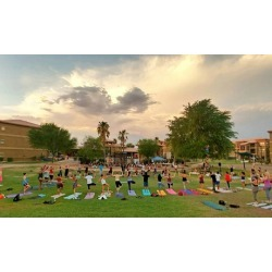 $5.50 for Admission to Weekly Music and Yoga Festival at Desert Canvas ($10 Value)