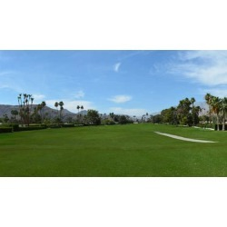 Indian Canyons Golf Resort North Course found on Bargain Bro India from groupon for $69.00
