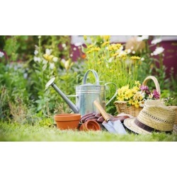 $30 for $50 Worth of Plants and Gardening Supplies at Williams Magical Garden Center & Landscape