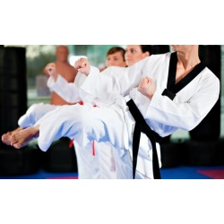 Taekwondo 10-Class Pass with Uniform and Option for Test and Graduation Belt from Go2Taekwondo Houston (93% Off)