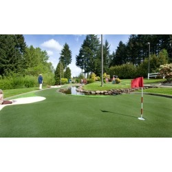$12.50 for One Round of Mini Golf for Up to Four People at Tualatin Island Greens ($20 Value)