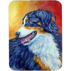 Carolines Treasures 7288LCB Australian Shepherd Glass Cutting Board - Large 15 x