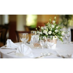 $27 for $60 Worth of Wedding-Planning Services - Ocala Weddings & Events