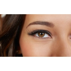 Upper or Lower Permanent Eyeliner, Both, or Eyebrow Application from Patti Martin (Up to 60% Off)