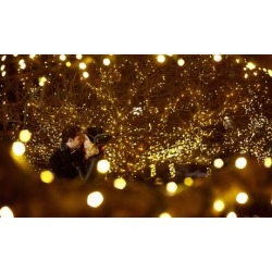 Holiday Light Installation and Removal from Bill's Handyman Services (Up to 10% Off). Three Options Available.