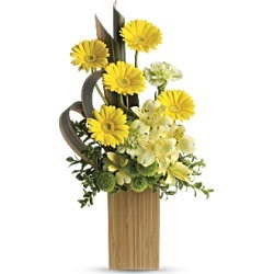New Baby Flowers - Sunbeams And Smiles By Teleflora - Multi - Flower Delivery