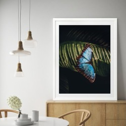 Social Butterfly Printed Wall Art Size: 80 x 60cm