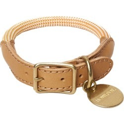 Ginger We Are Tight Leather Dog Collar Size: Medium found on Bargain Bro India from templeandwebster.com.au for $35.38