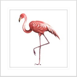 Flora and Fauna II Framed Print Frame Colour: White, Size: Small Square