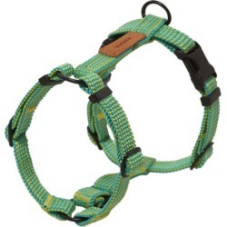 Palm Tree We Are Tight Dog Harness Size: Large found on Bargain Bro India from templeandwebster.com.au for $42.46