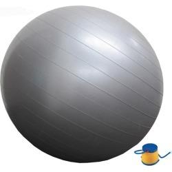 Anti-Burst 75cm Gym Ball