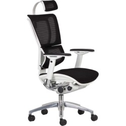 Ergohuman Fit High Back Office Chair Frame Colour: White found on Bargain Bro India from templeandwebster.com.au for $410.21