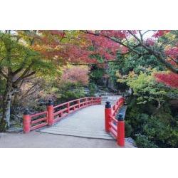 Poster: Kober's Daisho-In Temple in Autumn, Miyajima Island, Hiroshima