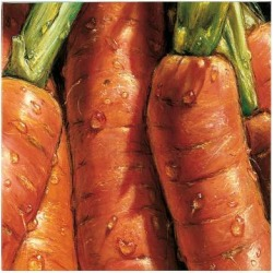 Giclee Painting: Alma'ch's Carrots, 16x16in.