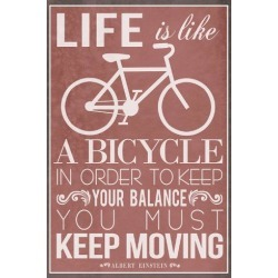 Poster: Life Is Like a Bicycle, 36x24in.