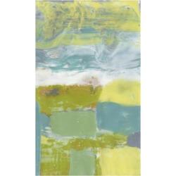 Stretched Canvas Print: Goldberger's Art Print: Star Field Wall Art by