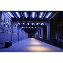 Poster: SeanPavonePhoto's Tunnel on the High Line in New York City, 24