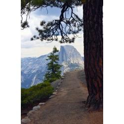 Poster: Friel's USA, California, Yosemite National Park, Half Dome, Gl