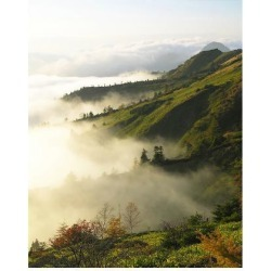 Art Print: Foggy Japanese Valley in Fall, 56x44in.