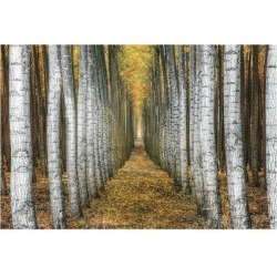 Giclee Painting: Cahill's Tree Farm, 34x49in.
