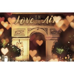 Art Print: Marshall's Love is in the Arc de Triomphe v2, 24x16in.