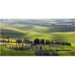 Art Print: Ratsenskiy's Country Houses in Tuscany, 26x50in.