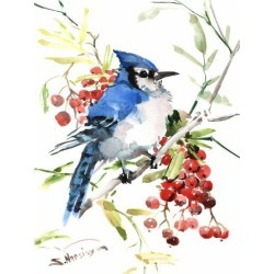 Giclee Painting: Nersisyan's Blue Jay And Berries, 16x12in.