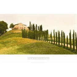 Art Print: Chamberlain's Tuscan Hills, 24x36in.