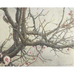 Giclee Painting: Vest's Apricot Creeper, 44x56in.