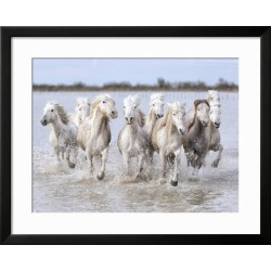 Framed Art: Carmassi's Running Wild Horses, 25x31in.