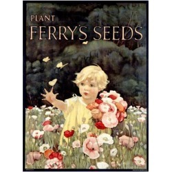 Giclee Painting: Ferry's Seeds, 60x44in.
