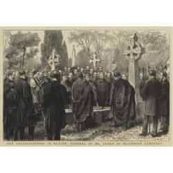Giclee Painting: The Assassinations in Dublin, Funeral of Mr Burke in