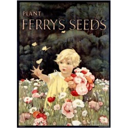 Giclee Painting: Ferry's Seeds, 44x32in.