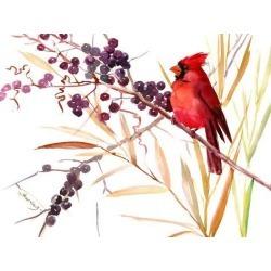 Art Print: Nersisyan's Cardinal And Berries, 12x16in.